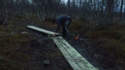 Reinforcing trails