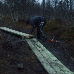 Reinforcing trails