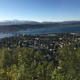 Albuen og Fløya